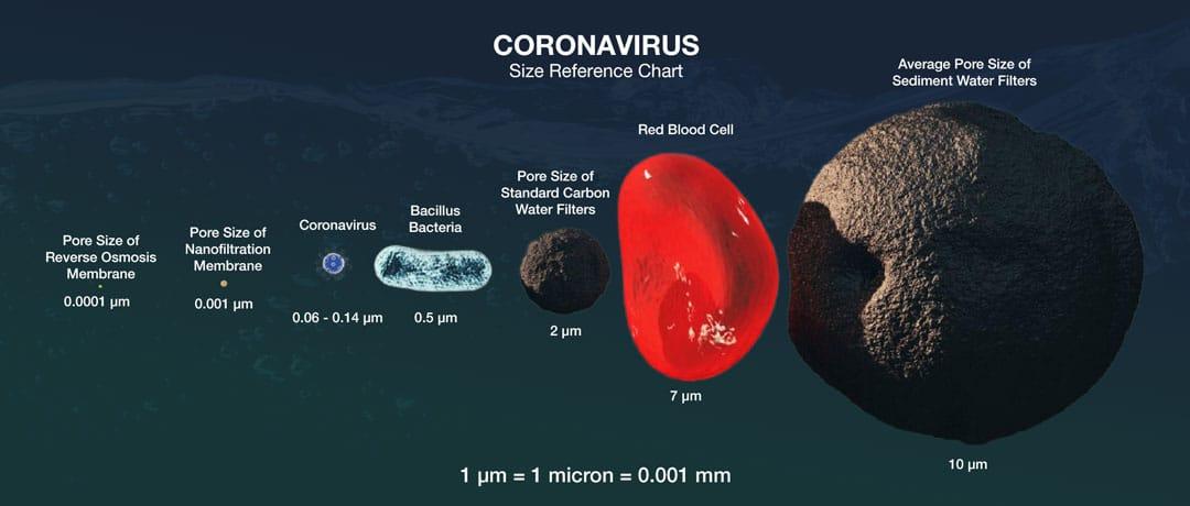 coronavirus-size-comparison